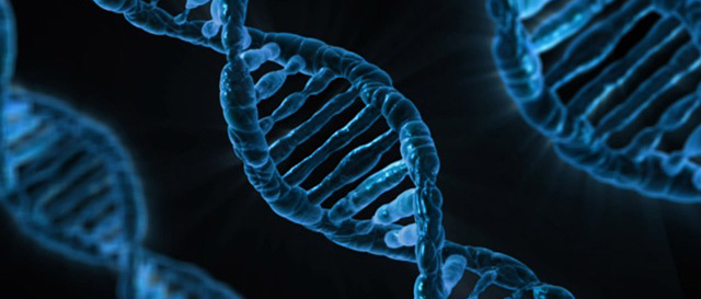 Genetic, non-invasive test could improve colon cancer screening - Thumbnail