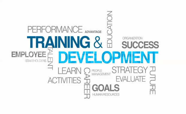 effectiveness on training and development