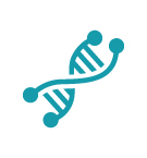 Icon depicting a strand of DNA.
