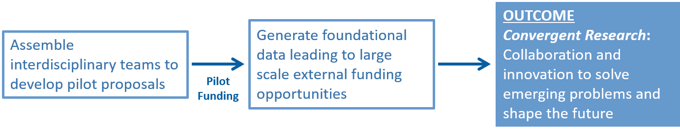 Assemble interdisciplinary teams to develop pilot proposals. Pilot funding: generate foundational data leading to large scale external funding opportunities. Outcome: Convergent Research: Collaboration and innovation to solve emerging problems and shape the future.