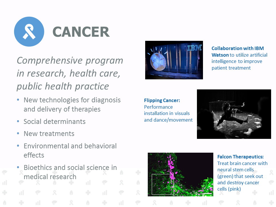 Comprehensive program in research, health care, public health practice. New technologies for diagnosis and delivery of therapies. Social determinants. New treatments. Environmental and behavioral effects. Bioethics and social science in medical research.