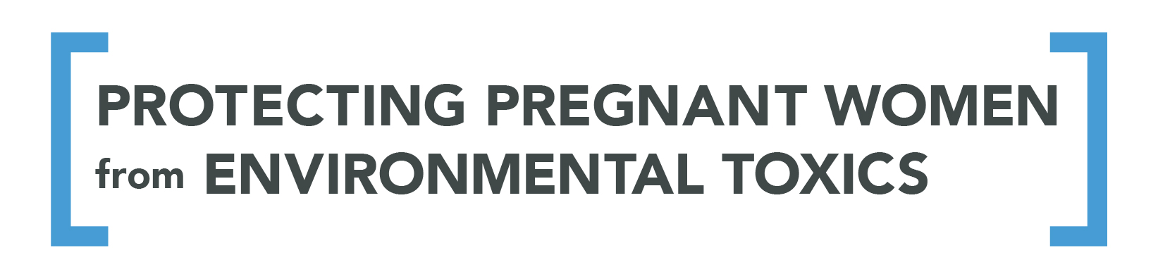 Protecting Pregnant Women from Environmental Toxics