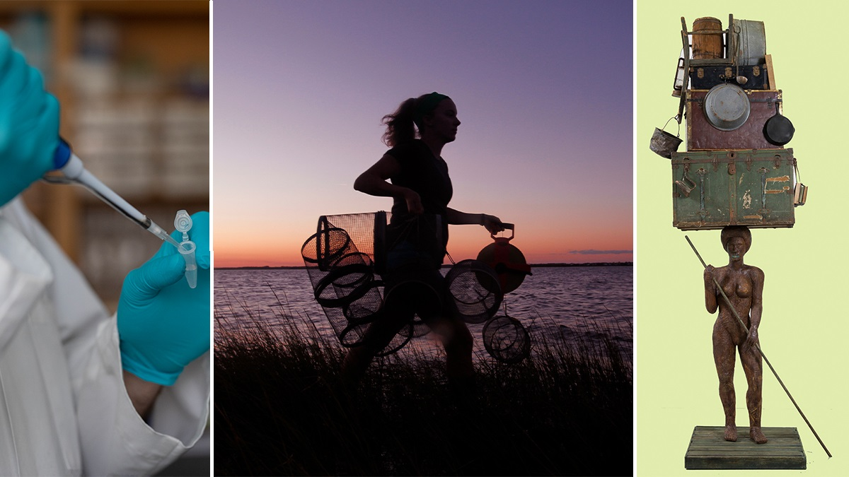 from right to left: an image of a person pipetting, a girl at sunset with fish traps, a sculpture
