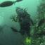 Jill Stewart diving at kicker rock in the Galapagos